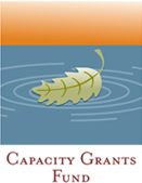 Capacity_Grants_Funds_Icon