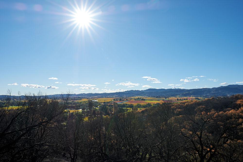 Napa Valley horizon